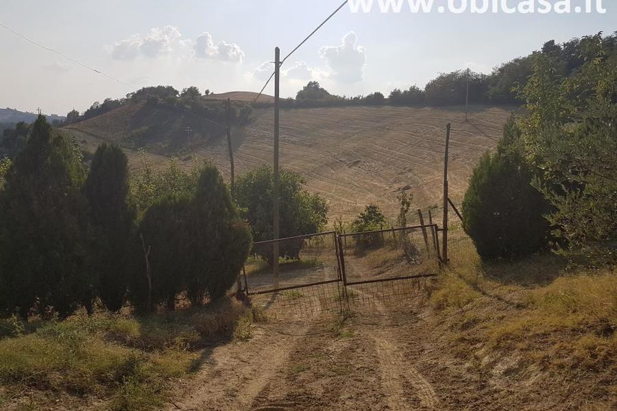 fotografie - terreno agricolo Modigliana (FC)
